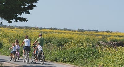 Family cycling in the Charente